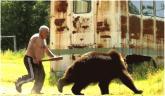 Caccia all'orso