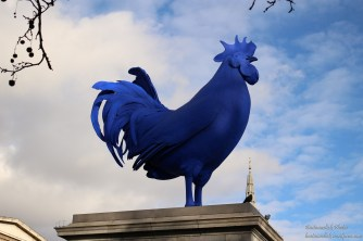 Il gigantesco gallo di Trafalgar Square