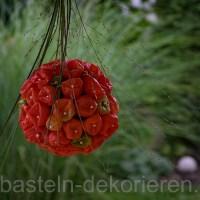 Herbstdekoration mit Lampionblumen