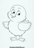 Pinou Chick Färbung und freie Zeichnung zu drucken ...