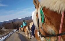Excursie calare turism ecvestru tura cu cai