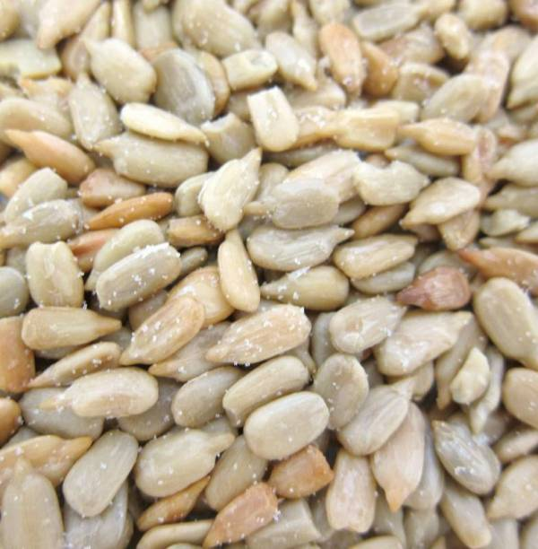 Sunflower Seeds Roasted Salted Shelled 16 oz