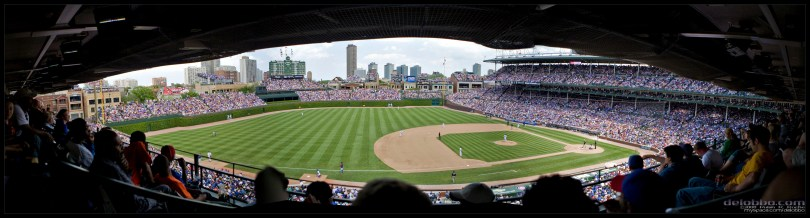 cubs_panorama_by_delobbo