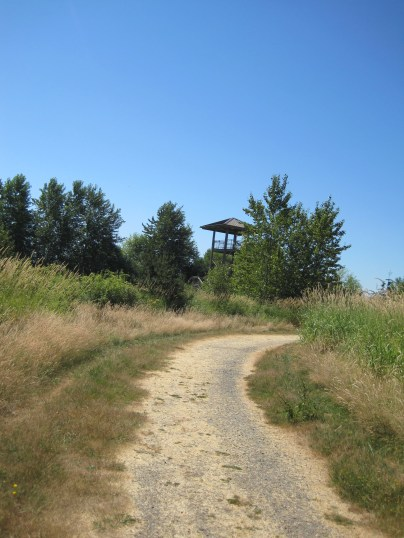 Tower in the Green River Natural Resources Area