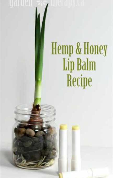 Hemp-and-Honey-Lip-Balm-Recipe (1)