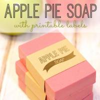 DIY 10 Min Apple Pie Soap