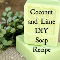 Melt and Pour Soap - Coconut and Lime