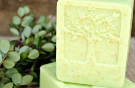 Melt and Pour Soap – Coconut and Lime