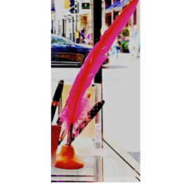 Photograph of a long cerise quill in a shop window