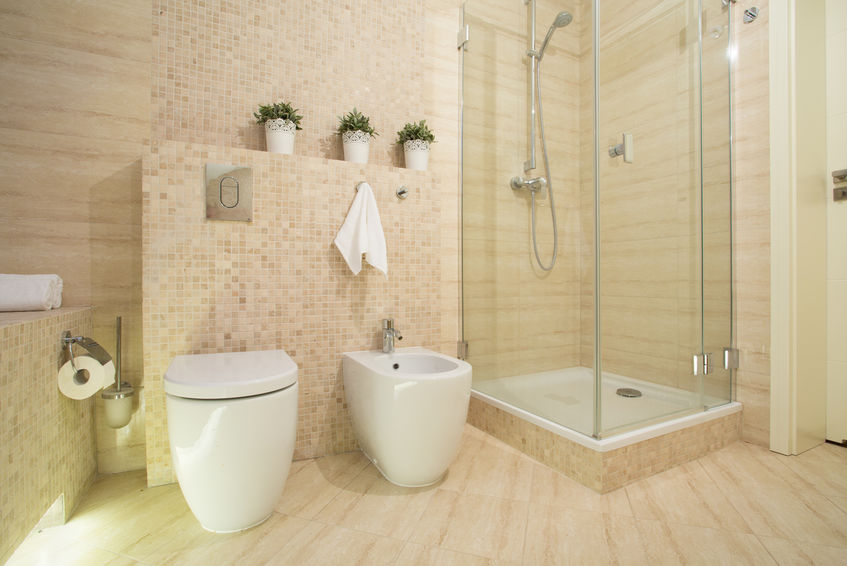 Shower with glass door in modern fancy washroom