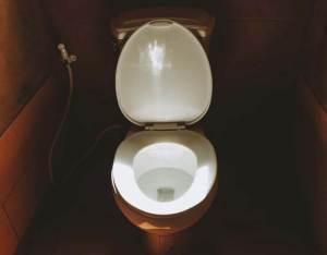 Best toilet light