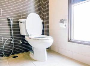 Best Elongated Toilets