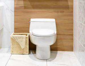Round Toilet