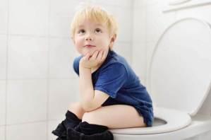 Best Toddler Toilet Seat