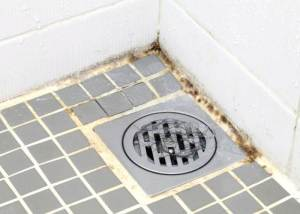 Remove Mold From Bathroom Ceiling With Vinegar