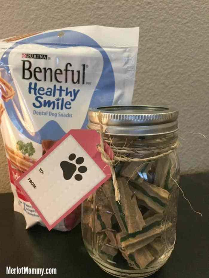 Use a mason jar to hold dog treats.