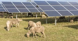 Location terre agricole pour photovoltaïque