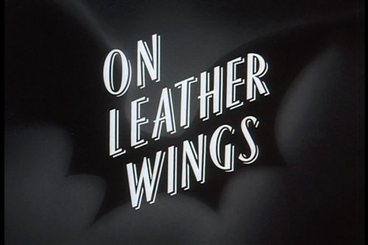 LeatherWings