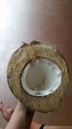 Fresh coconut from the beach.