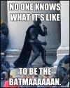 BatmanGuide70264