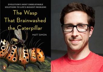 matt-simon-wasp