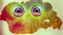 psychedelic-lichen