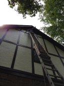 Bats in gable vents at Woodstock job