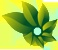 Logo Color Photosynth