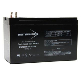 BW1290 NB batterie survolteur