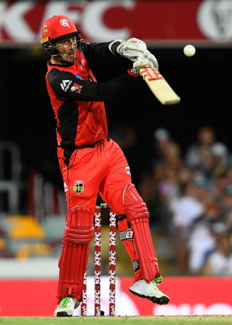 Tom Cooper 65 Melbourne Renegades Brisbane Heat BBL cricket