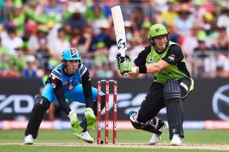 Shane Watson 68 Sydney Thunder Adelaide Strikers Big Bash League BBL 28th Match cricket