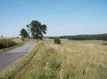 The Road from Bewernick to Heilsberg. The River Alle is to the right, behind the trees. (Photograph by Jan Kowalik)