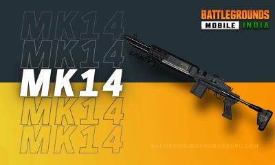 BGMI Mk14 Weapon
