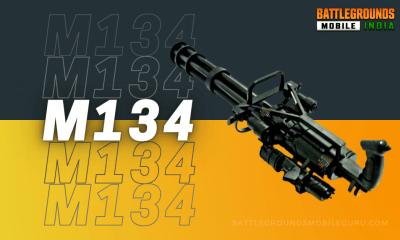 BGMI M134 Weapon