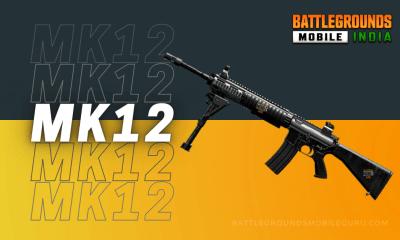 BGMI MK12 Weapon