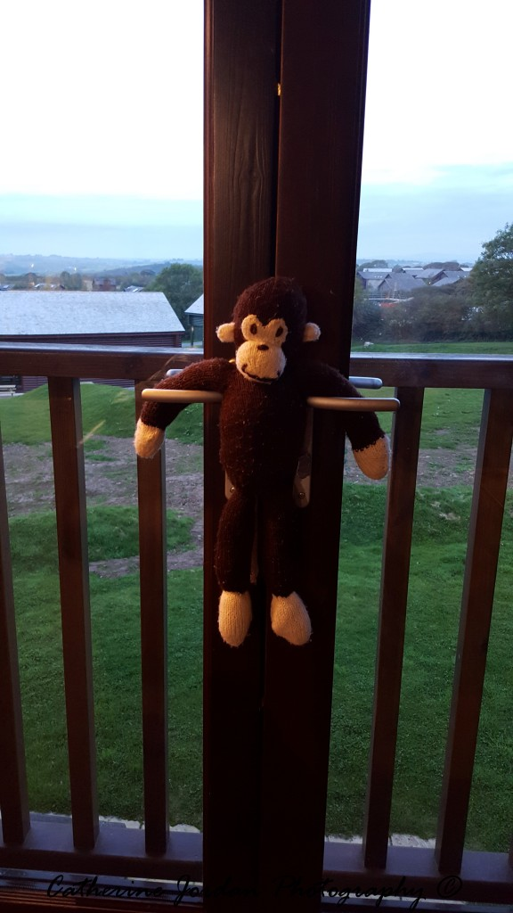 George hanging out in Bluestone!