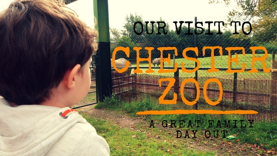 our visit to chester zoo