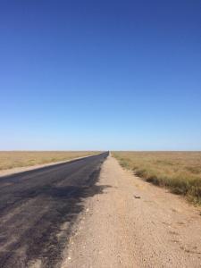 Die kasachische Steppe