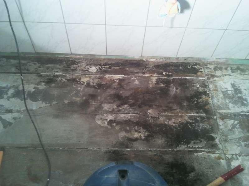 BAUDE  Forum  Modernisierung  Sanierung  Bauschden  15100 Wasserschaden im Bad