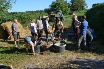 ecotopia-strawbale-workshop-sweden-2017-42