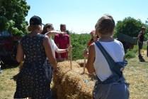 ecotopia-2018-strawbale-workshop-24