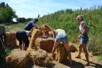 ecotopia-2018-strawbale-workshop-246a