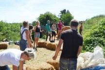 ecotopia-2018-strawbale-workshop-270