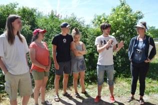 ecotopia-2018-strawbale-workshop-298
