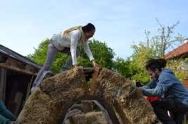 STEP-U3-load-bearing-straw-bale-training-55