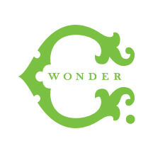 C. Wonder Stores are Closing