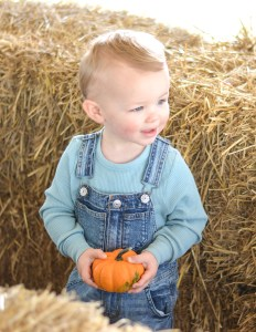 A Day at the Pumpkin Patch