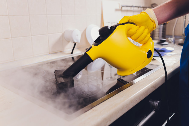 steam mop disinfectant