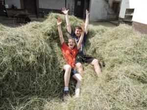 Heuernte Kinder Bauernhof Zeltnerhof