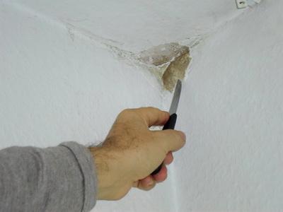Schimmel entfernen - Wand Tipps vom Schimmelgutachter - BAUGUTACHTER